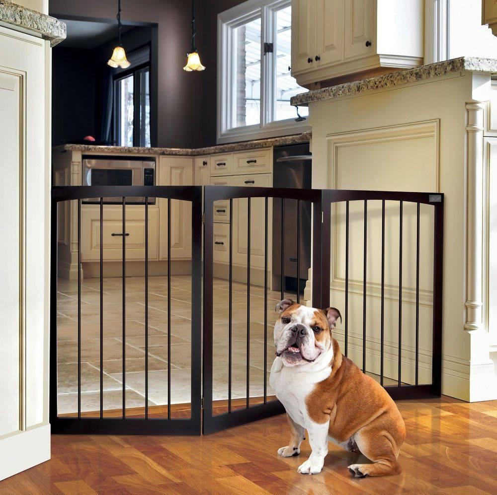 Электрический невидимые заборы для собак: плюсы и минусы