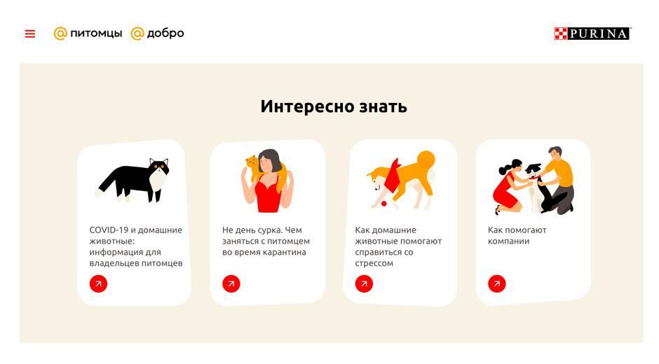 Премия тэглайн 2016 — высшая российская награда за достижения в digital-сфере