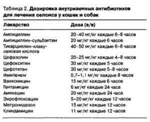 Амоксициллин - действие, дозировка, цена, препараты   университетская клиника