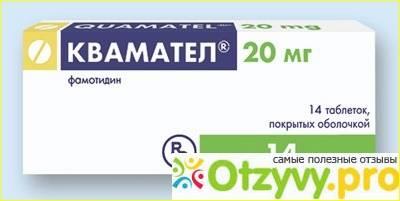 Таблетки и инъекции кваматела для собак (инструкция по применению, дозы, фармакология, показания и противопоказания). зачем собакам назначают квамател? дозирование препарата