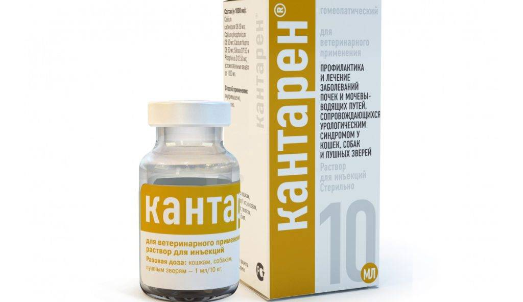 Гомеопатический препарат для кошек и собак хелвет кантарен 10 мл