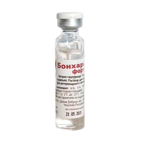 Бонхарен для собак – лекарство от артроза