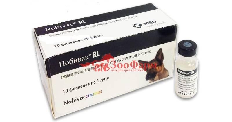 Дипентавак для собак, инструкция по применению, противопоказания и побочные действия