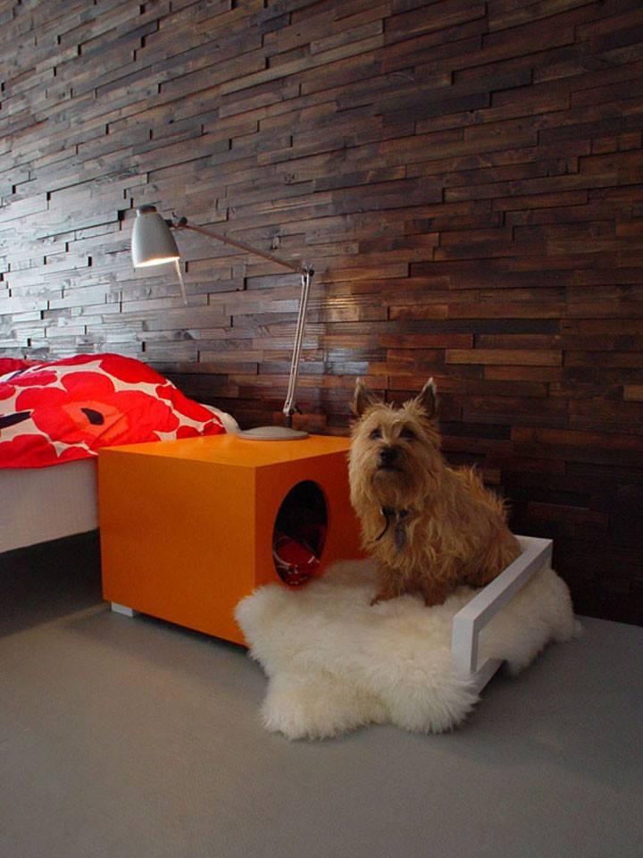 Зачем нужны документы ркф на собаку, как их сделать и сколько это стоит