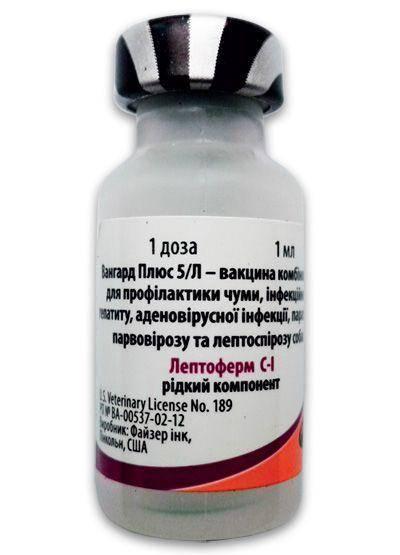 Вангард 5: вакцина для собак с коронавирусом