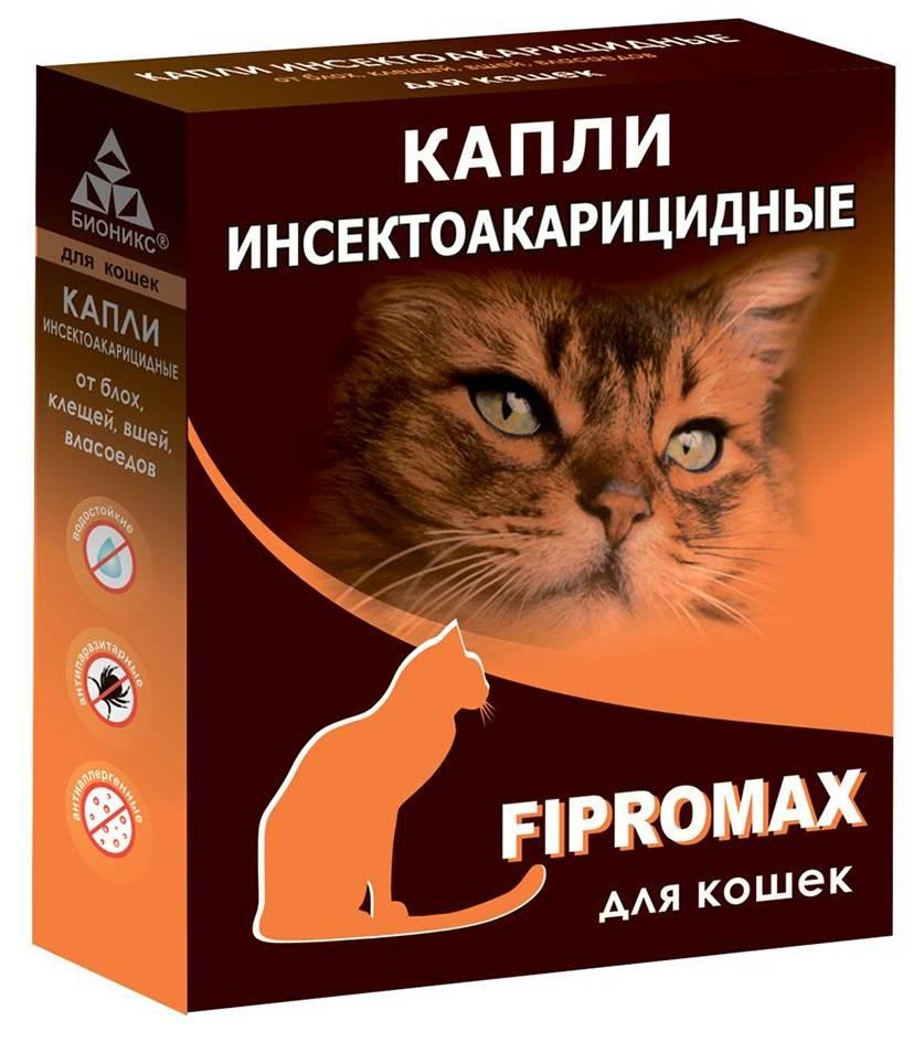 Дана ультра для кошек и котят более 4 кг - купить, цена и аналоги, инструкция по применению, отзывы в интернет ветаптеке добропесик