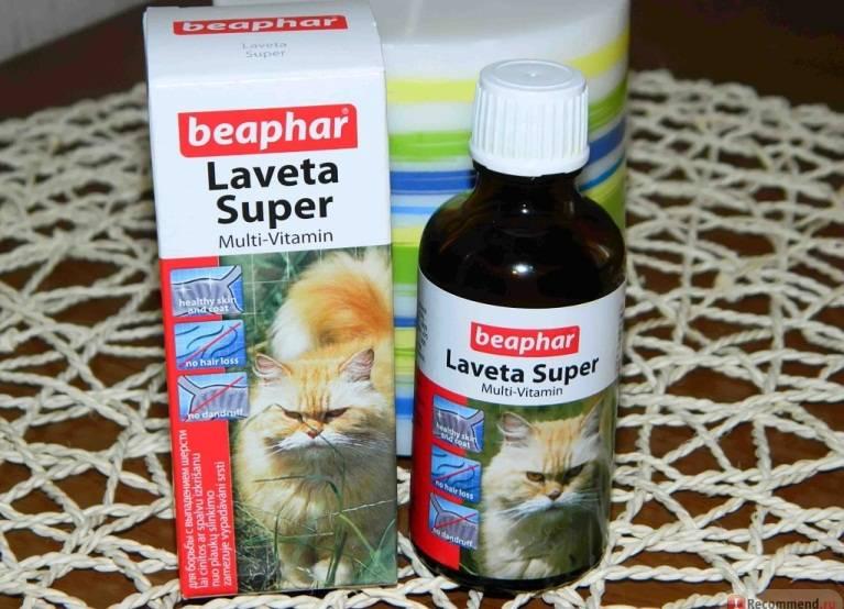 Витамины для кошек:  для шерсти, иммунитета, какие лучше