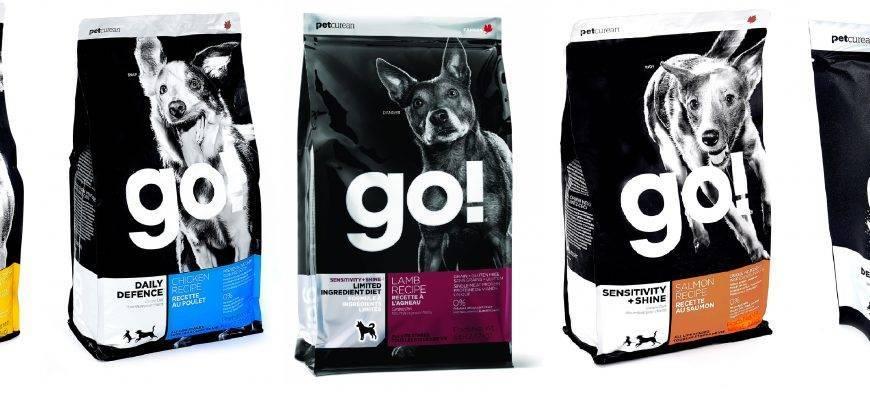 Что такое корма холистик класса для собак: честный топ лучшей продукции