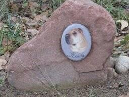 ᐉ можно ли хоронить животных на человеческом кладбище – похороны кошек - zoomanji.ru