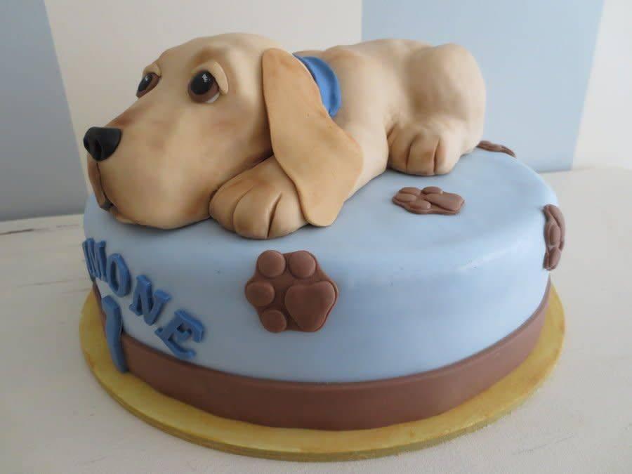 На день рождения наших собак мама приготовила для них торт: питомцы были в восторге от такого угощения