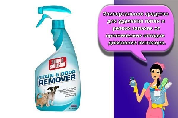 Как и чем убрать стойкий и трудновыводимый запах кошачьей мочи с ковра?