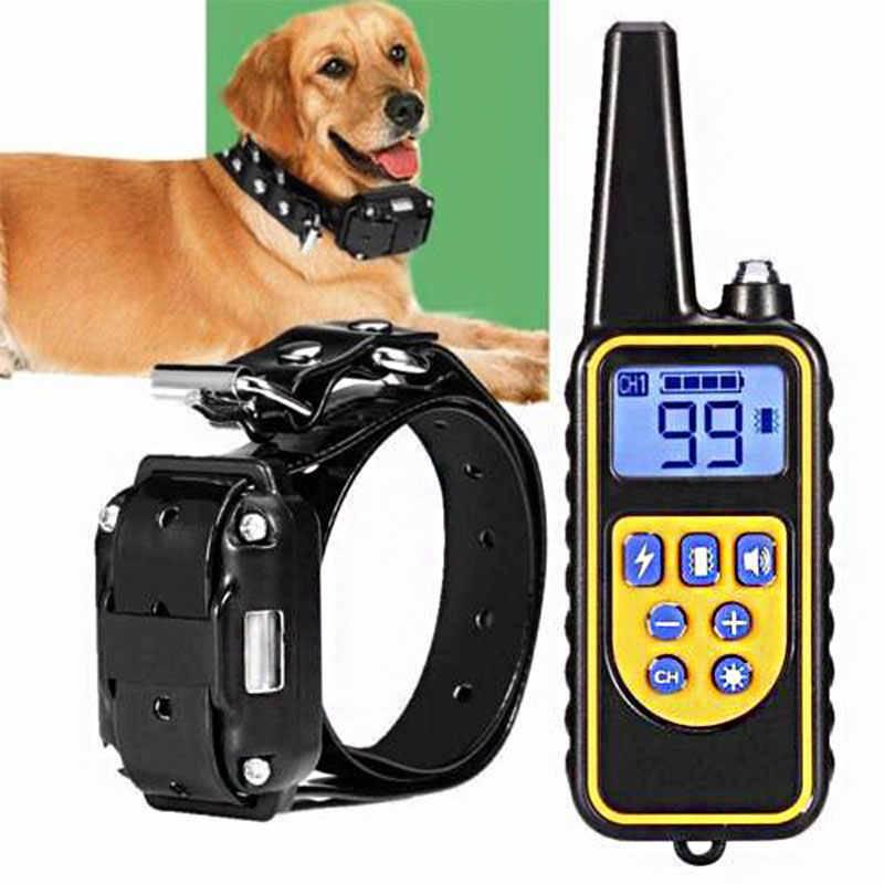 Как выбрать электронный ошейник для собак