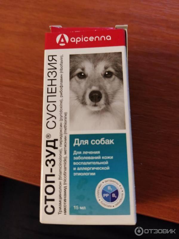Суспензия стоп-зуд для собак - купить, цена и аналоги, инструкция по применению, отзывы в интернет ветаптеке добропесик