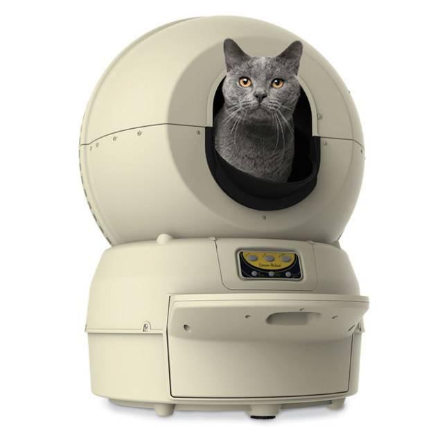 Автоматический кошачий туалет: что это такое, принцип работы, разновидности и модели