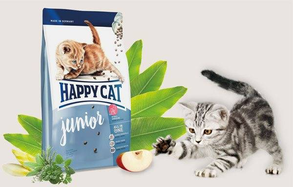 Корм ландор для кошек | цена, отзывы, состав