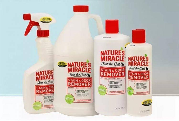 Как избавиться от запаха кошачьей мочи на ковре: самые эффективные подручные средства, народные методы и профессиональная химия