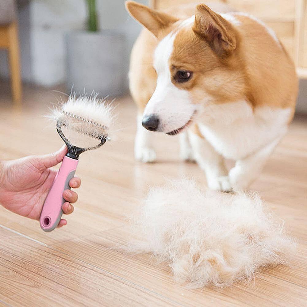 Уход за шерстью длинношерстных собак