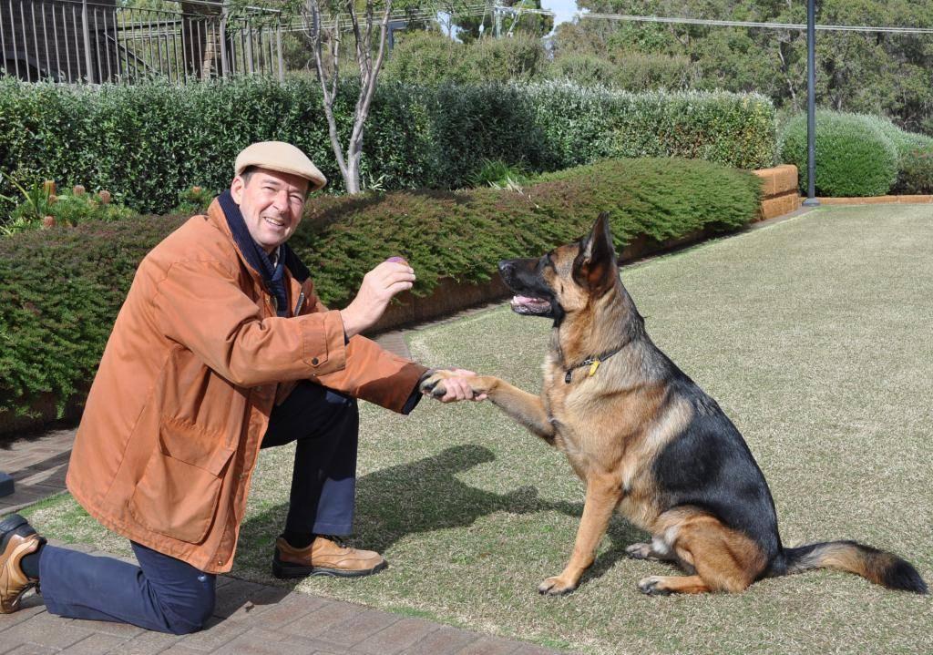 Почему православным нельзя держать дома собаку?