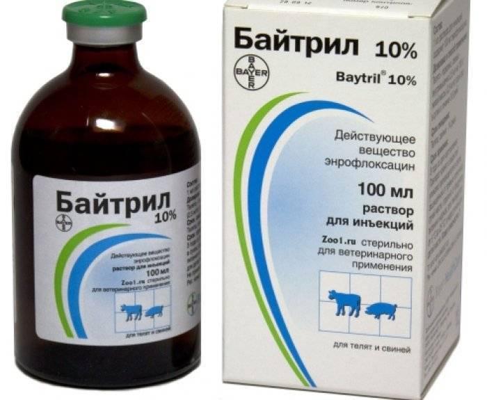 Байтрил 5% - купить, цена и аналоги, инструкция по применению, отзывы в интернет ветаптеке добропесик