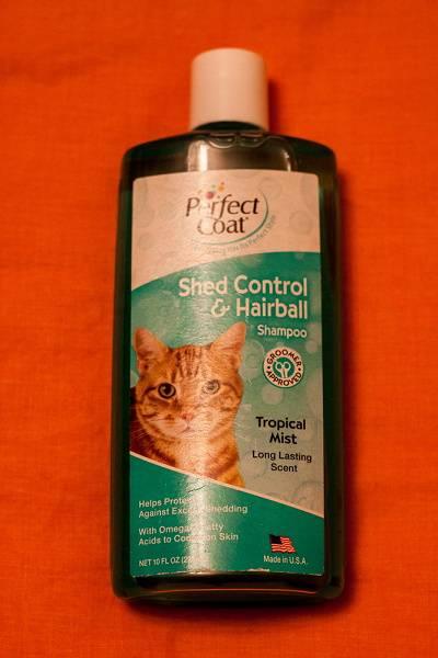 Шампунь для кошек: виды (сухой, лечебный и другие), как выбрать наиболее подходящий для своего питомца, как применять, отзывы