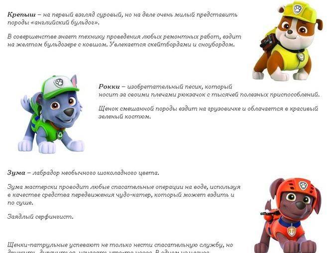 Щенячий патруль как зовут щенков: имена с фото и описаниями