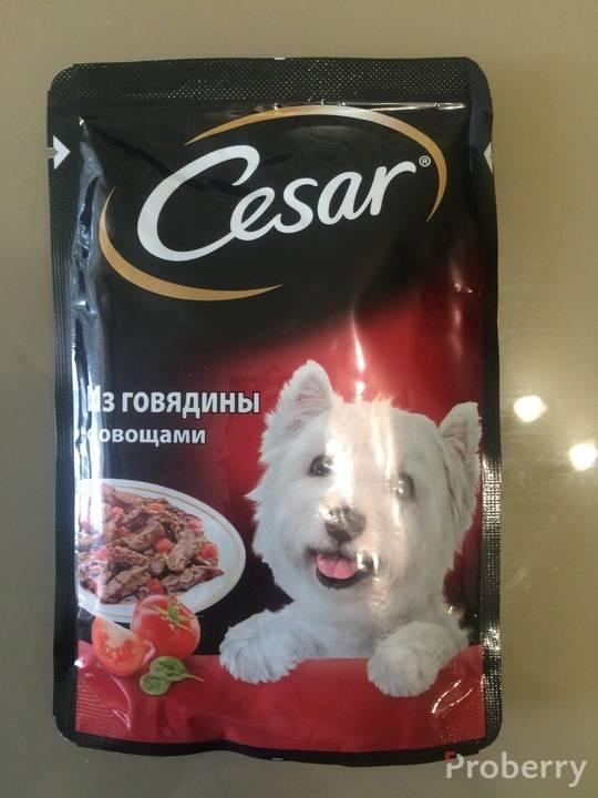 Отзывы консервированный корм для собак мелких пород cesar » нашемнение - сайт отзывов обо всем