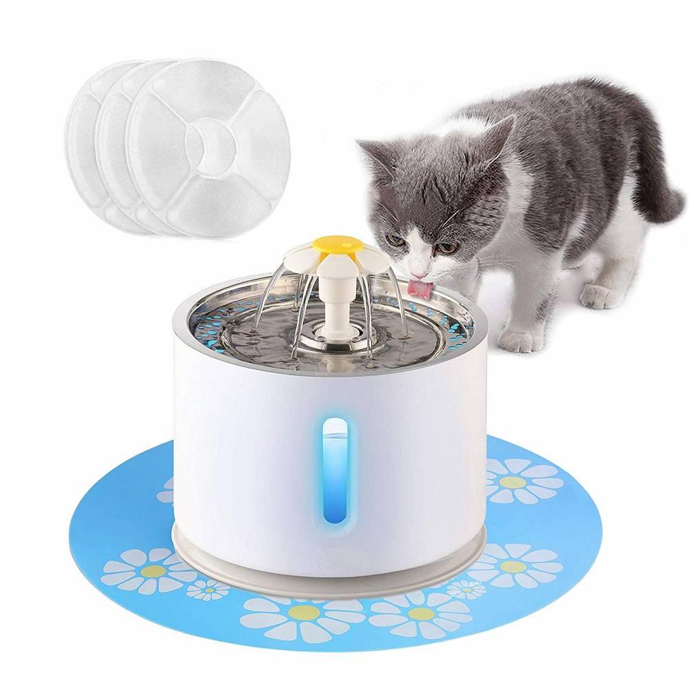 Какими бывают поилки для кошек и зачем они нужны