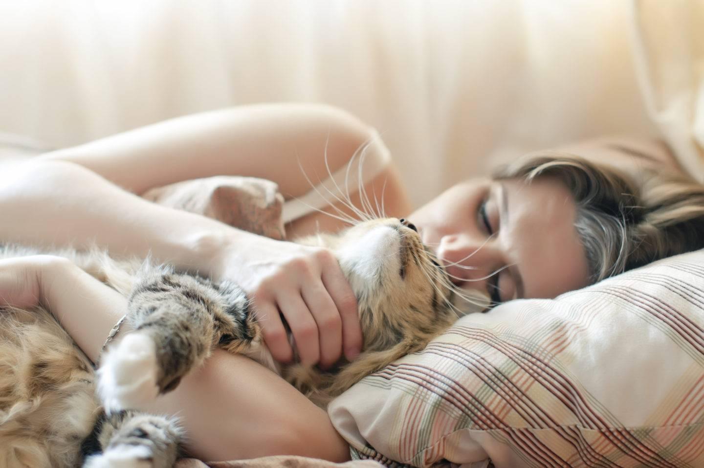 Причины, по которым кошки спят со своими хозяевами