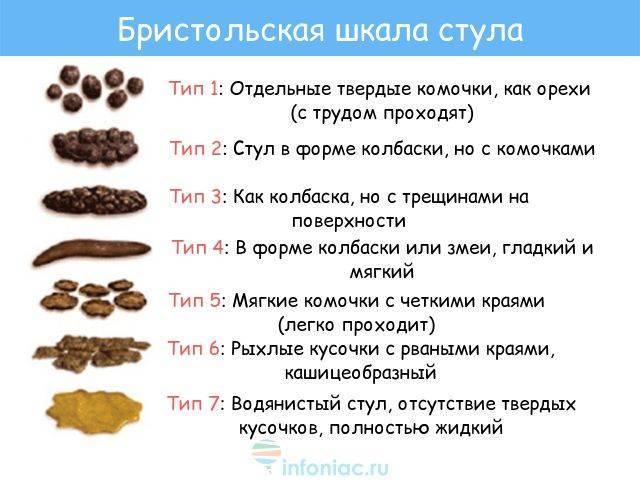 """Анализ кала у собак. ветеринарная клиника """"зоостатус"""""""