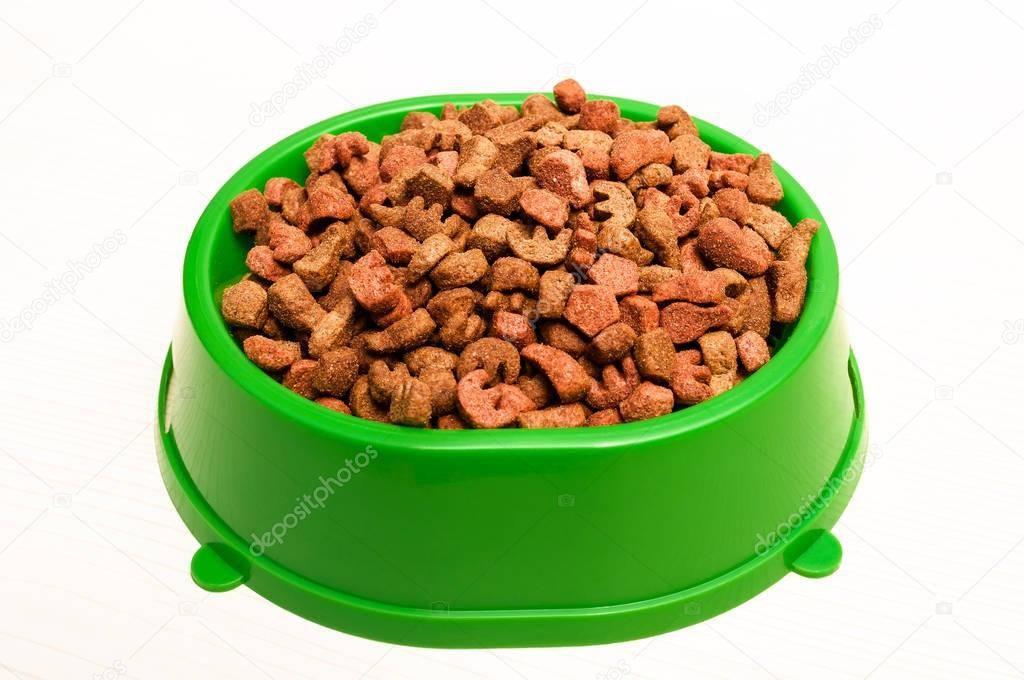Перевод щенка на сухой корм