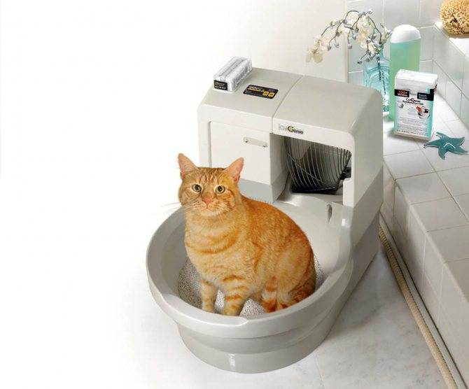 Автоматический туалет для кошек (самоочищающийся)