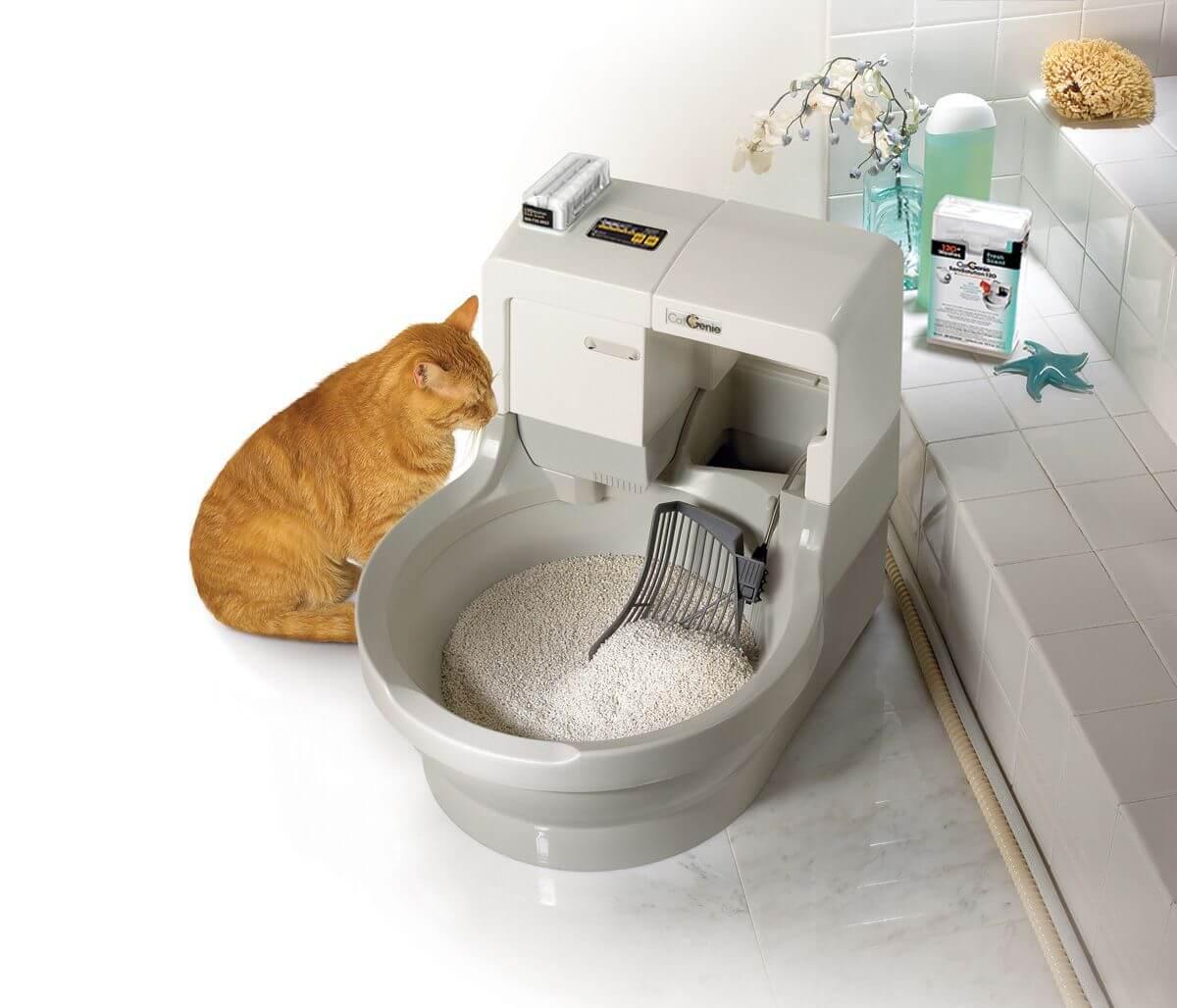 Туалеты-домики для кошек: как выбрать закрытый горшок для кота? особенности углового кошачьего лотка, отзывы владельцев