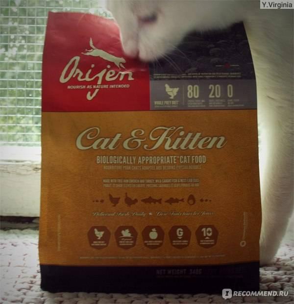 Как самому сделать анализ сухих кормов для кошек?