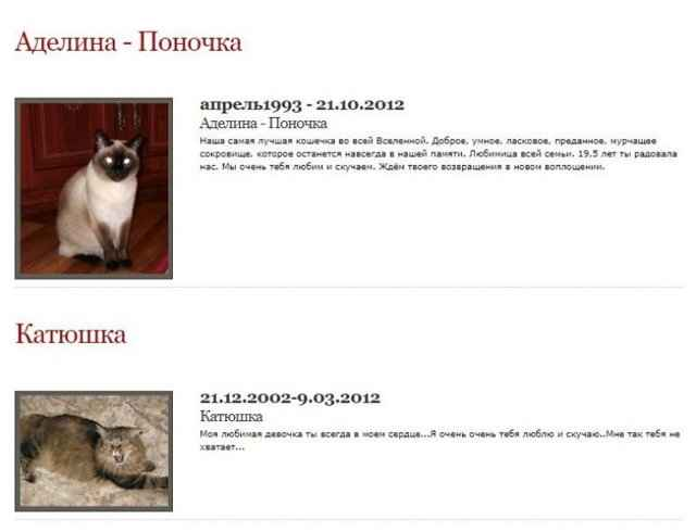 ᐉ можно ли хоронить животных на дачном участке — где похоронить кота в спб - zoo-mamontenok.ru