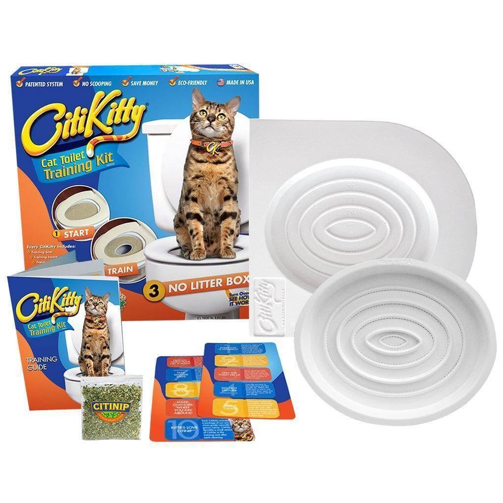 Как приучить кота к унитазу в квартире: способы обучения, противопоказания, рекомендации, советы специалистов