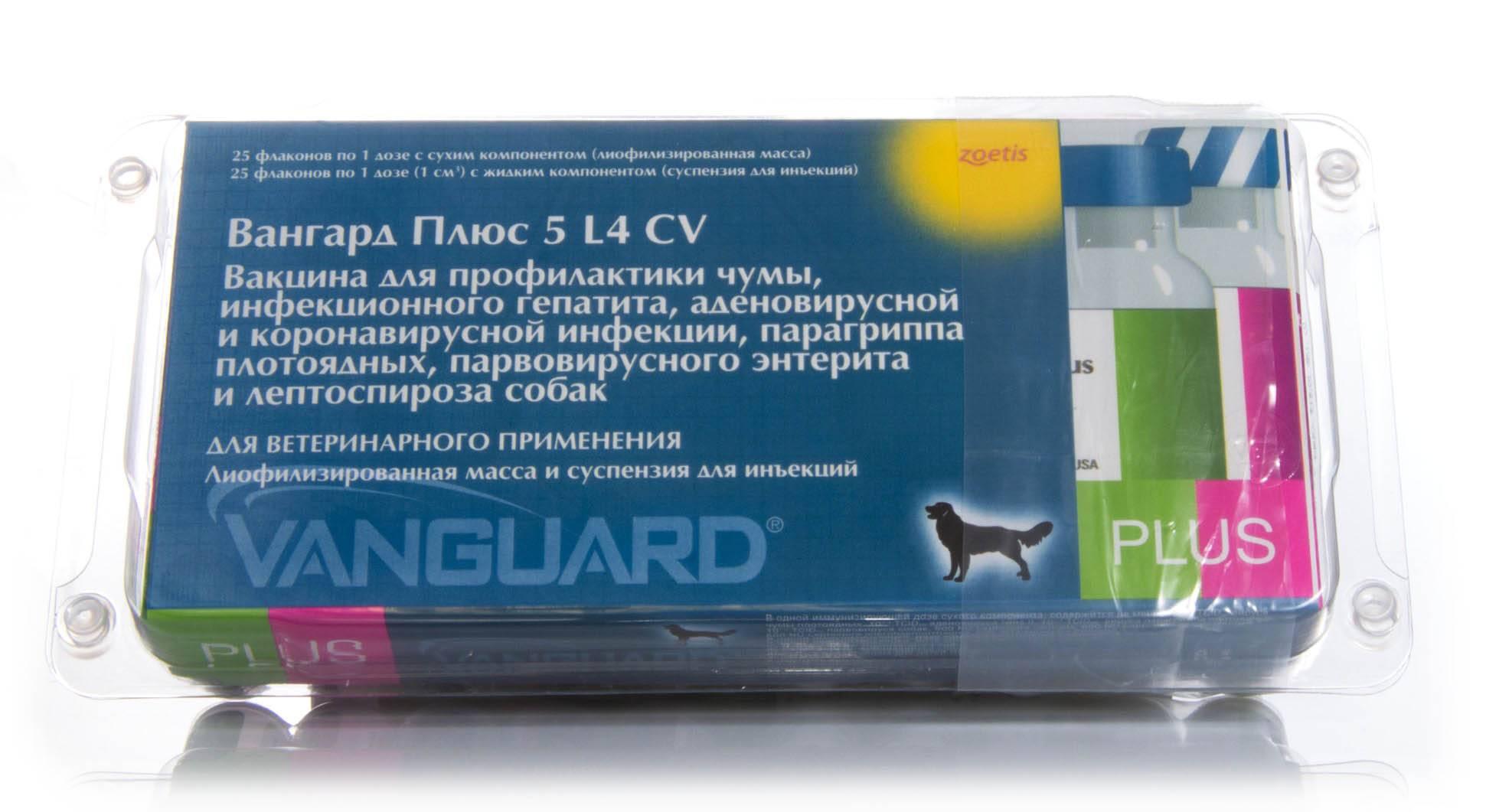 Вангард 5 для собак: инструкция и показания к применению, отзывы, цена