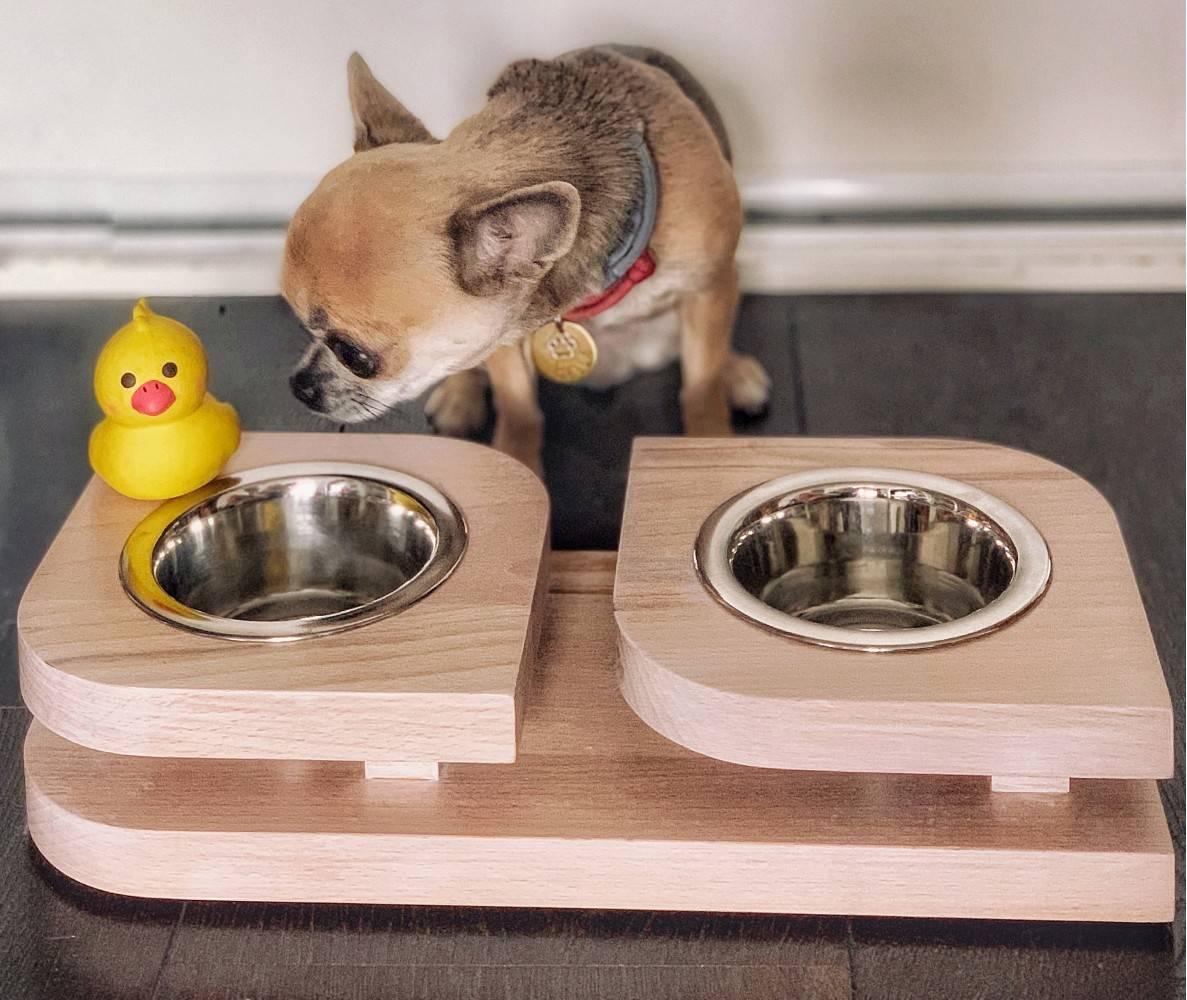 Как правильно выбрать миску собаке - dogkind.ru