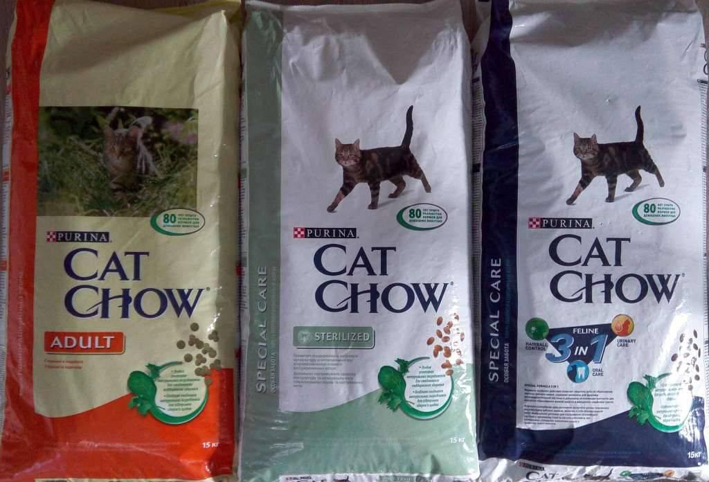 Обзор корма для кошек кэт чау (cat chow): виды, состав, отзывы