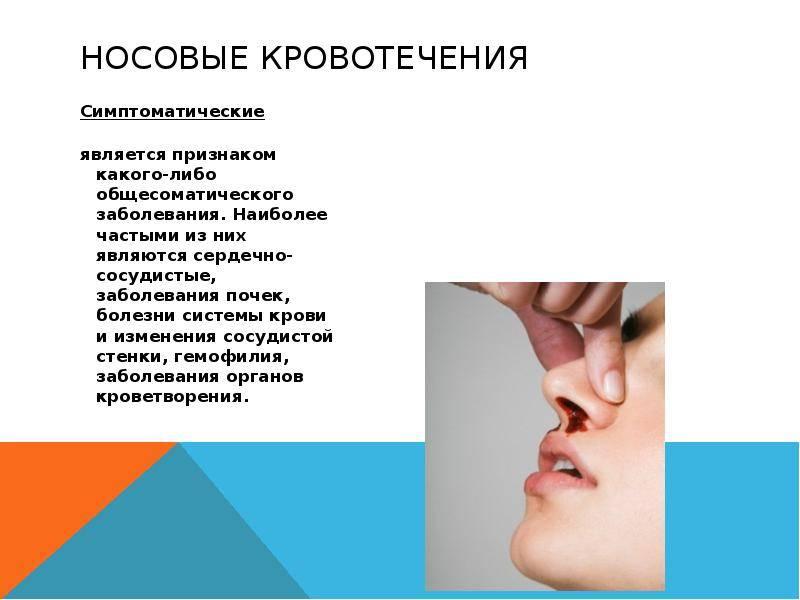 """Кровотечение в брюшной полости у кошек - симптомы, лечение внутреннего кровотечения у кошек в москве. ветеринарная клиника """"зоостатус"""""""