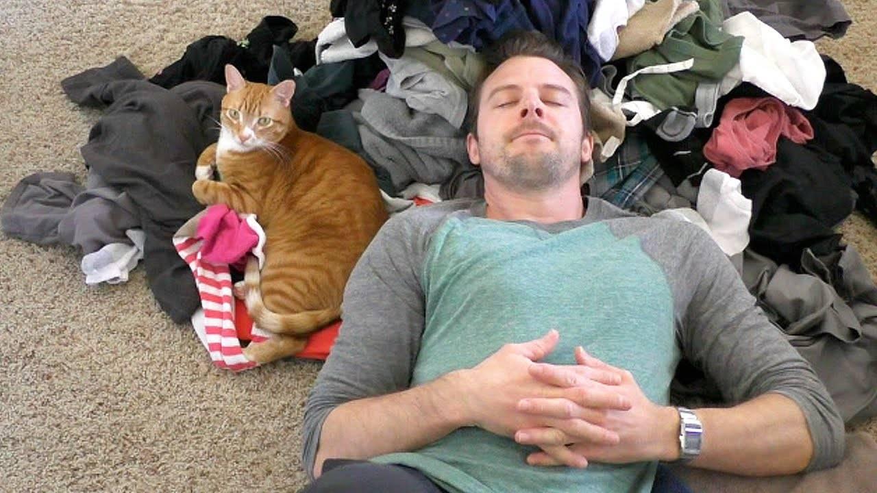 Почему кошки откликаются на «кис-кис»