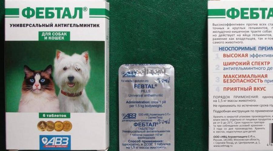 Антигельминтик для кошек и собак авз фебтал таб. (таблетки, 6 шт) - цена, купить онлайн в санкт-петербурге, интернет-магазин зоотоваров - все аптеки