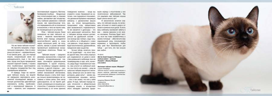Ликой порода кошек