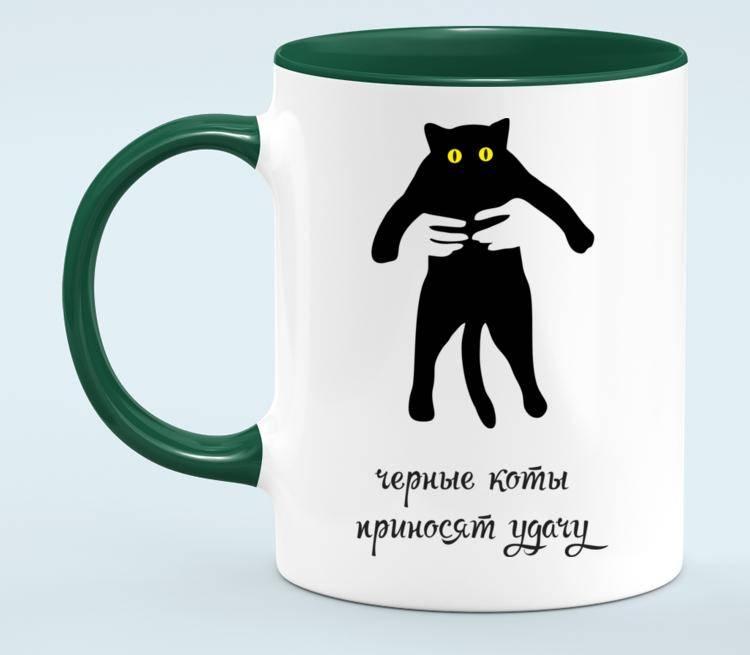 Черный кот – исчадие ада или жертва наветов: отделяем факты от вымыслов :: инфониак