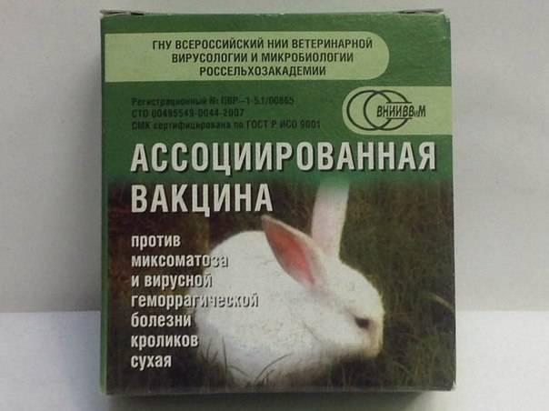 Ассоциированная вакцина для кроликов: для профилактики каких болезней используется, противопоказания и побочные реакции, как делать