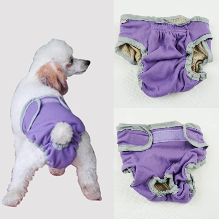 Памперсы для собак мелких пород | цена, фото, для маленьких собак