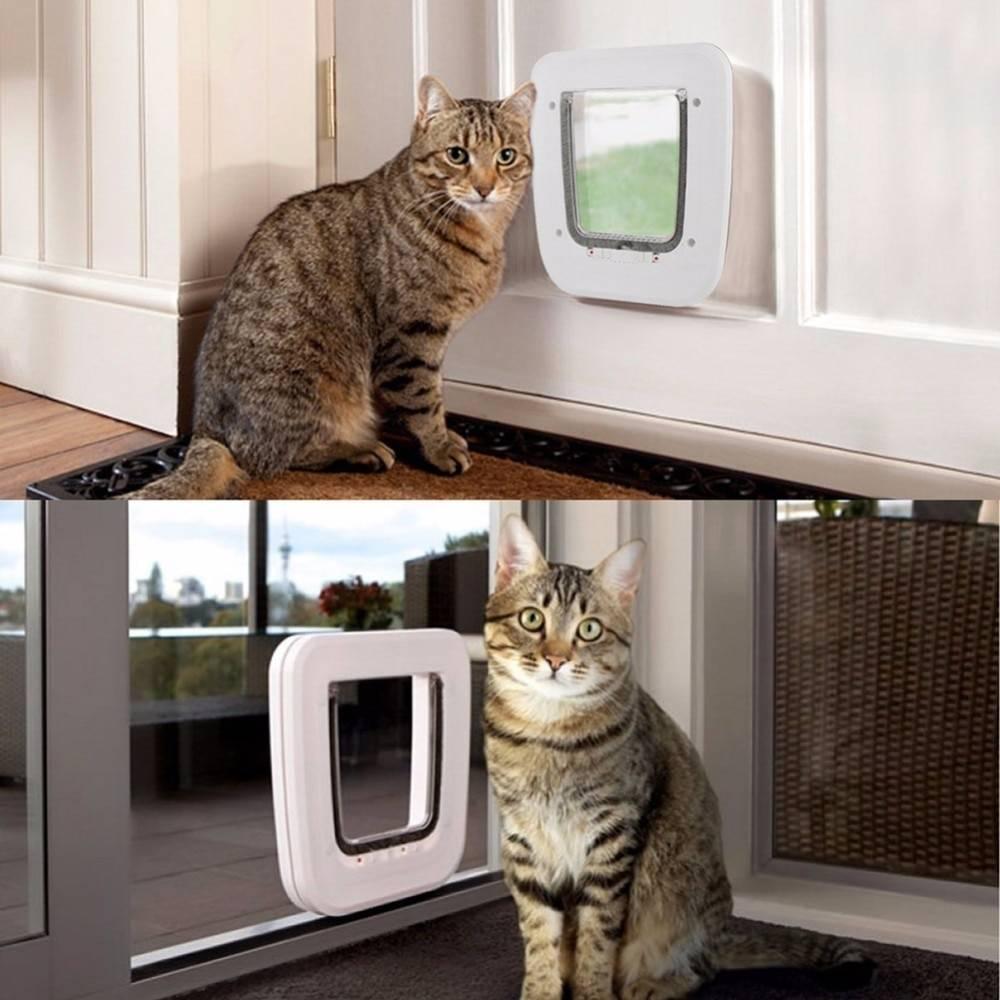Дверь для кошки: виды и их изготовление | двери дома