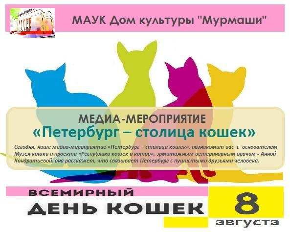 День кошек: в россии и странах мира