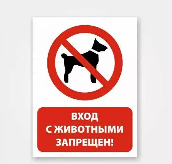 Могут ли не пустить в магазин с коляской и собакой? | кот-юрист