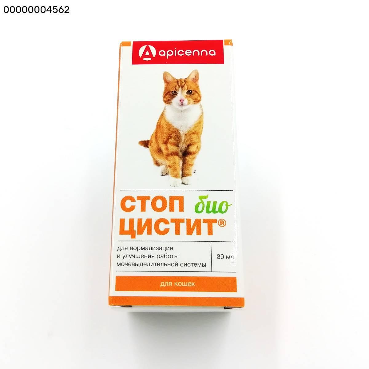 Стоп-цистит для собак - купить, цена и аналоги, инструкция по применению, отзывы в интернет ветаптеке добропесик