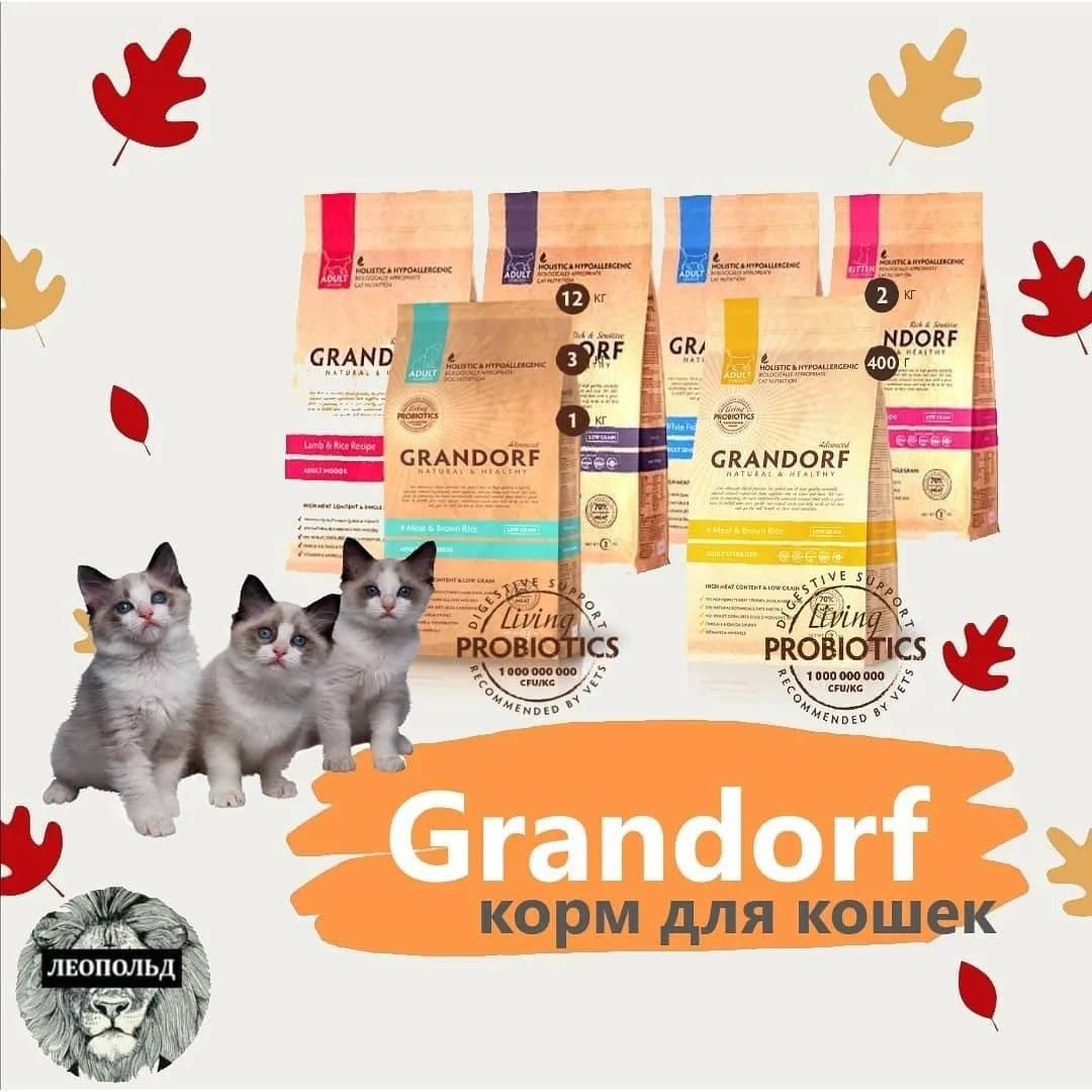ᐉ обзор корма для кошек grandorf - ➡ motildazoo.ru
